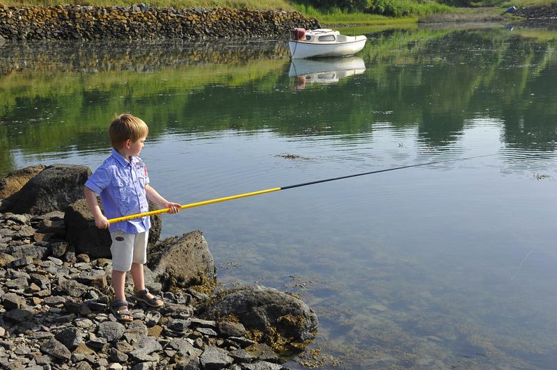 Quel vent vaut mieux pour la pêche au printemps